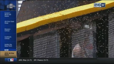 Most buzz-worthy moment: The bee delay