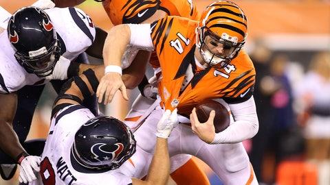 Cincinnati Bengals: D