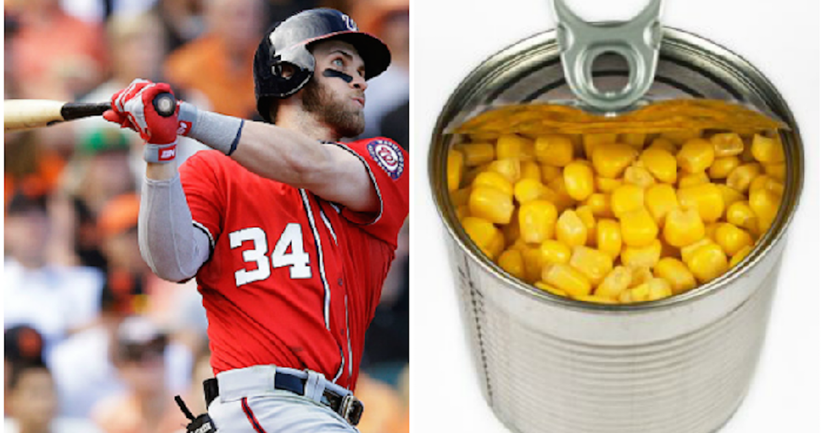 15 baseball terms that sound like pure gibberish to ...