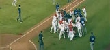 Massive benches-clearing brawl breaks out in minor league game