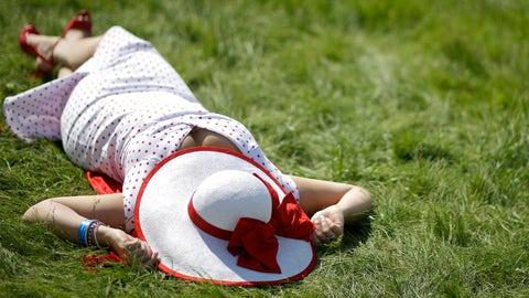 Basking in the sun