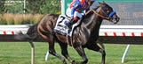 Bayern installed as favorite in 10-horse field for Travers Stakes