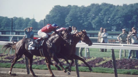 Affirmed outdoes Alydar, I II, III