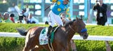 Check out American Pharoah's 'Moneigh' painting that will head to auction