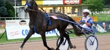 After her racehorse is put down, Swedish harness rider eats him