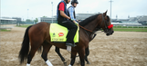 Nyquist drifts to even-money in early wagering on Preakness