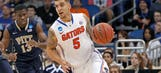 In senior season that almost wasn't, Wilbekin leading Gators in NCAAs