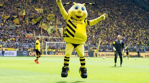 The buzz around Borussia