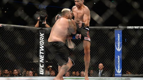 Fabricio Werdum vs. Mark Hunt
