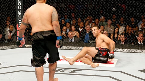 Mark Hunt vs. Fabricio Werdum at UFC 180
