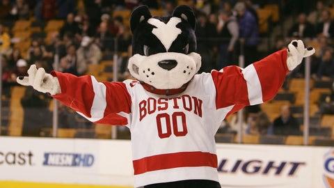 Rhett the Boston Terrier (Boston University)