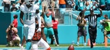 Louisville Football: DeVante Parker has another big day in Dolphins' win