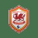 Cardiff Cardiff City