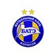 Borisov BATE