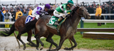 Exaggerator heads packed field in Travers Stakes