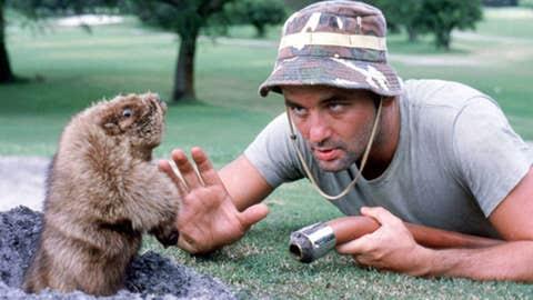 Bill Murray, golf