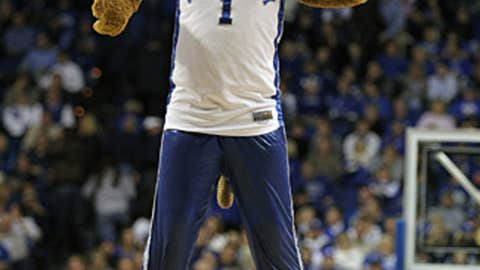 The Kentucky Wildcat