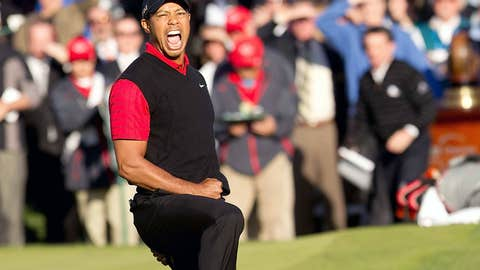 Tiger defends his title
