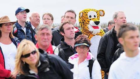 Tiger fan