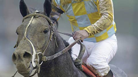 Monarchos, 2001