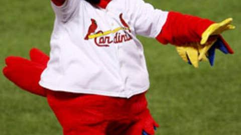 Fredbird, St. Louis Cardinals