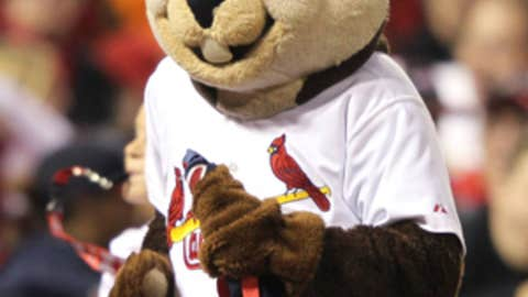 Rally Squirrel, St. Louis Cardinals