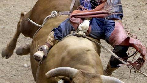 Ride 'em, cowboy