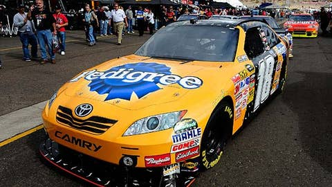 Middle of the road -- Kyle Busch