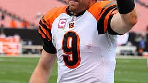 The Bengals will be your AFC North champions