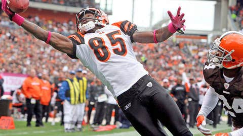 99. Chad Ochocinco, WR, Bengals (2009 Rank: 86)