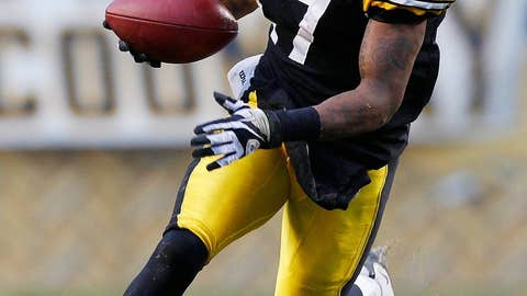 Pittsburgh Steelers WR Mike Wallace