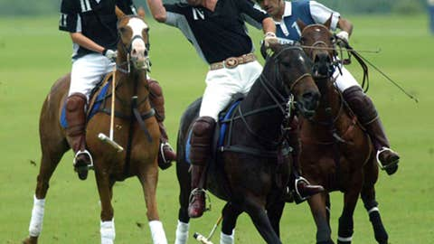 Princes Charles, William and Harry (polo)