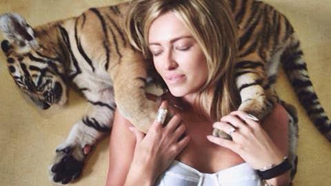 'Cat nap'