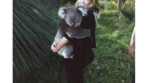 'Got to meet Sunshine the Koala today!! All thanks to my amazing fiancé'