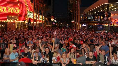 The UFC crowd went wild