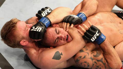 UFC 127: Te Huna v Gustafsson