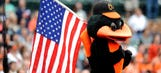 Baltimore Orioles unveil their very-Maryland Oriole Bird bobblehead
