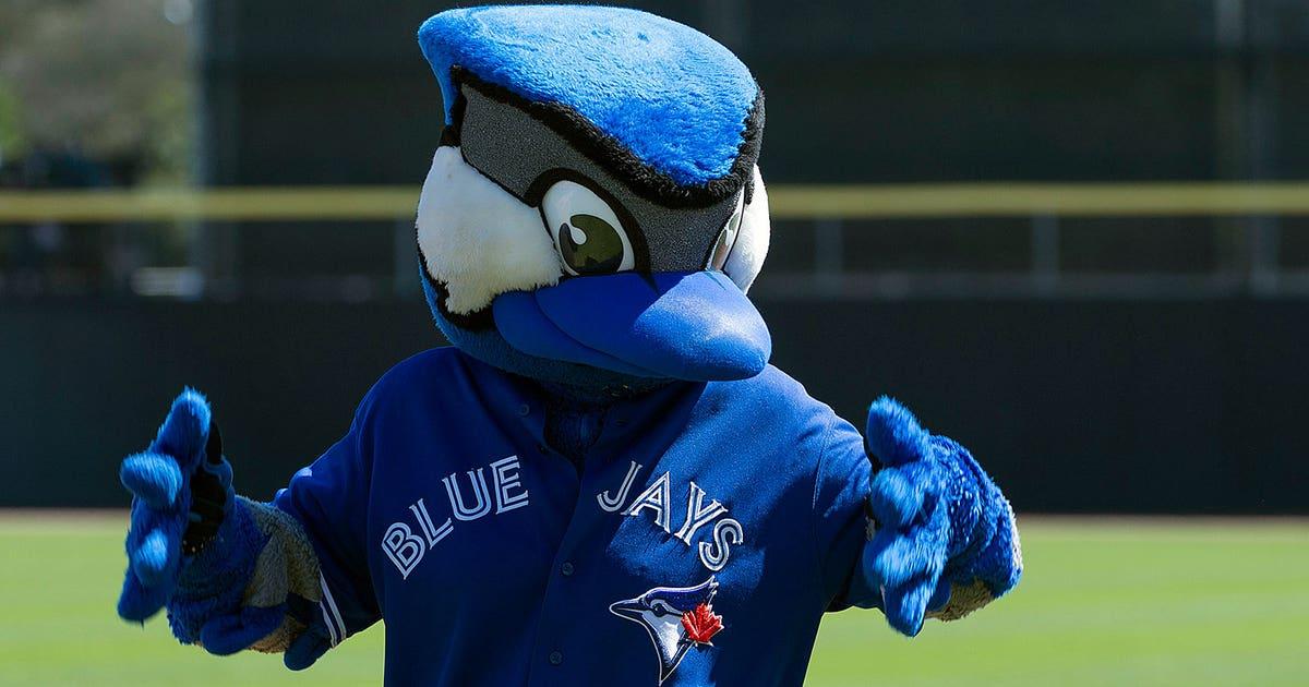 Watch: Blue Jays mascot plays beach volleyball | FOX Sports