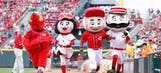 The only official MLB mascot rankings you'll ever need, or want