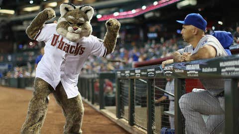 Arizona Diamondbacks: D. Baxter the Bobcat
