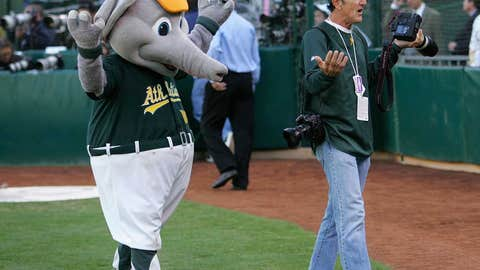 Oakland Athletics: Stomper