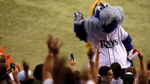 Tampa Bay Rays: Raymond