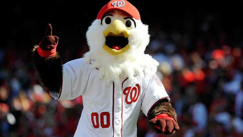 Washington Nationals: Screech