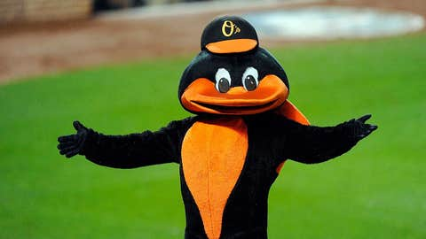 Baltimore Orioles: The Oriole Bird