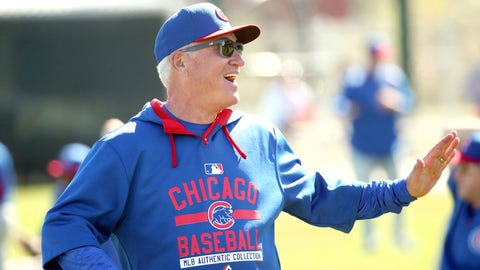 Has Joe Maddon contacted the nearest zoo in Arizona?