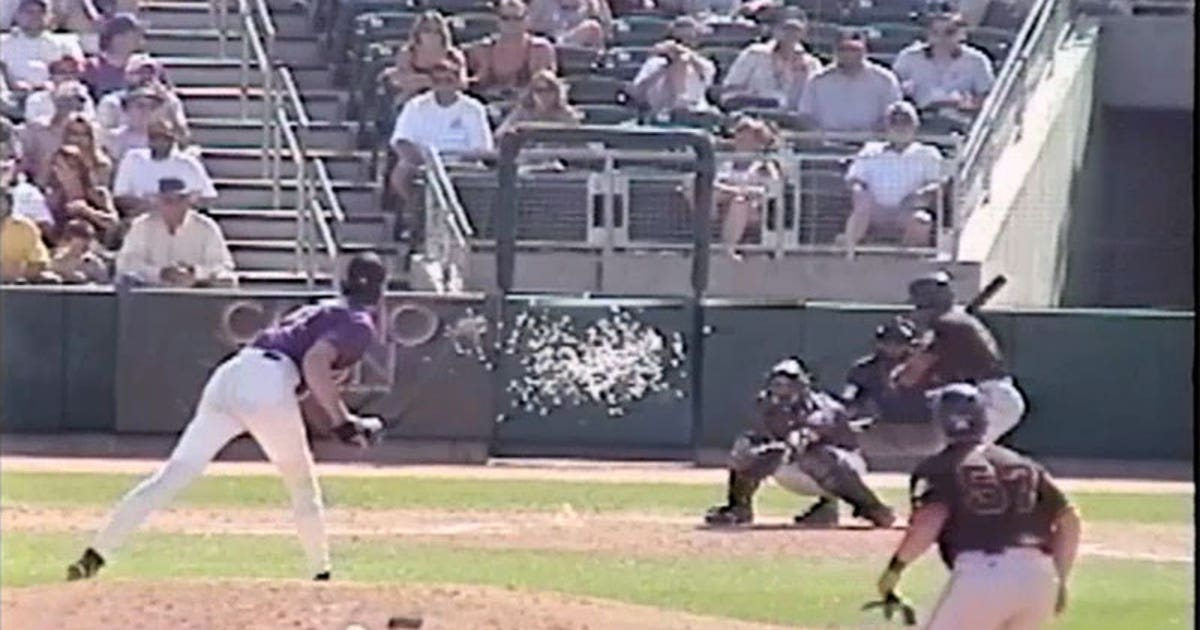 15 Years Ago Today Randy Johnson Ended A Bird S Life With