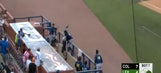 Mets minor leaguer makes terrific catch while falling into dugout