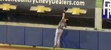 Angels minor leaguer flips over outfield wall while robbing home run