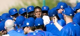 Cubs and Cardinals fans react to Dexter Fowler switching sides in the rivalry