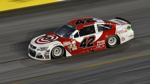 The real wild card